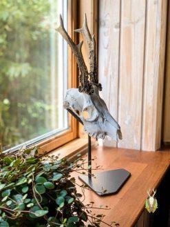 Bukkestativ i vindueskarm