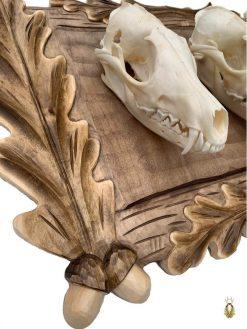 Håndlavet trofæplade til 3 rævekranier med egeløv
